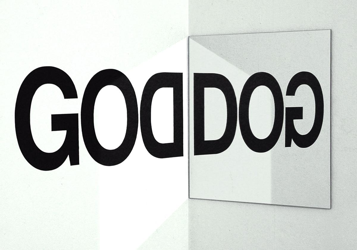 GoDoG_prototype